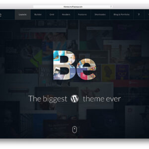 Theme Wordpress BeTheme